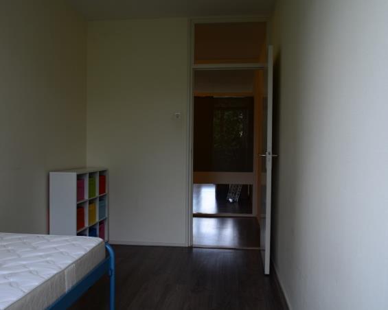 Kamer aan Roland Holstlaan in Delft