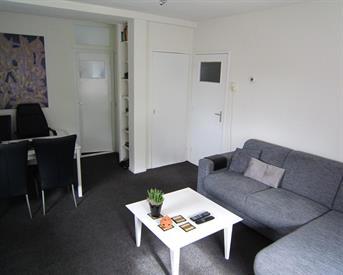 Kamer in Leiden, Hoflaan op Kamernet.nl: Gezellig appartement vlakbij het centrum