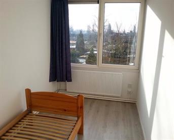 Kamer in Arnhem, De Houtmanstraat op Kamernet.nl: Room Arnhem (VHL, HAN)