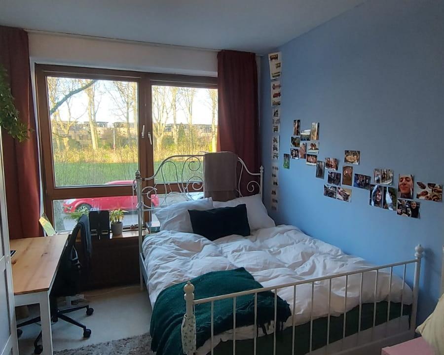 Kamer te huur in de Van Blommesteinstraat in Delft