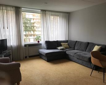 kamer in rotterdam everaertstraat op kamernetnl ruim en fijn