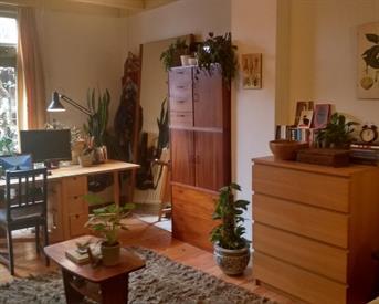 Kamer in Wageningen, Herenstraat op Kamernet.nl: Ruime kamer in Wageningen centurm