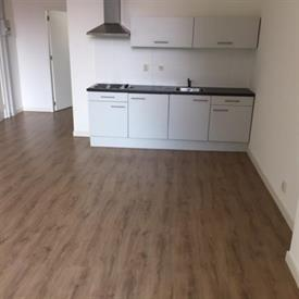 Kamer in Tilburg, Wilhelminapark op Kamernet.nl: Per 1-2-2019 beschikbaar!