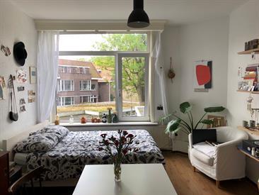 Kamer in Delft, Julianalaan op Kamernet.nl: Onderhuurster gezocht!!
