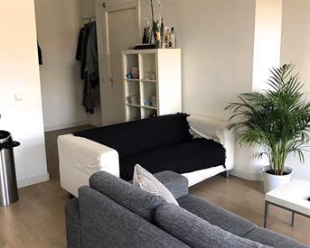 Kamer in Amsterdam, Van Bossestraat op Kamernet.nl: Tijdelijke gemeubileerde kamer (Westerparkbuurt)