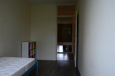 Kamer in Delft, Roland Holstlaan op Kamernet.nl: Leuke studentenkamer