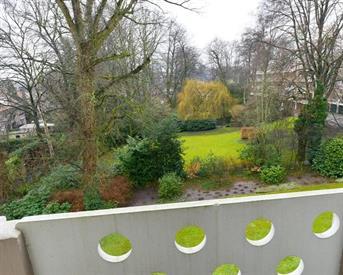 Kamer in Arnhem, Weg naar 't Lange Water op Kamernet.nl: Grote en lichte kamer in Arnhem