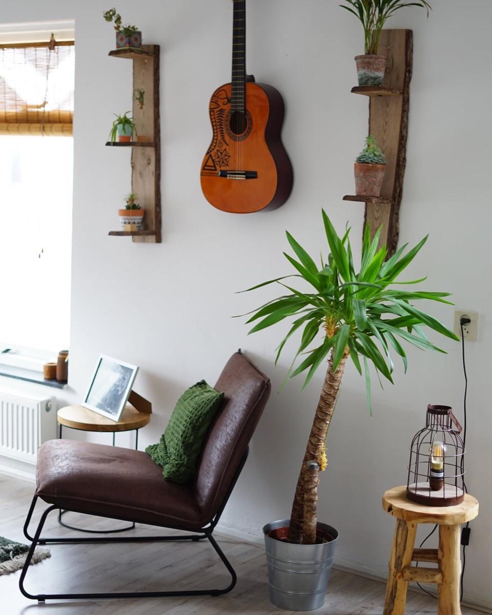 Kamer te huur in de Palmstraat in Haarlem