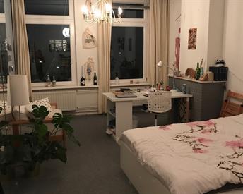 Kamer in Leiden, Rijnsburgerweg op Kamernet.nl: Tijdelijke grote kamer beschikbaar