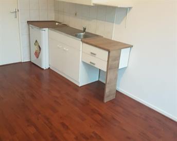 Kamer in Breda, Hooilaan op Kamernet.nl: STUDIO €515 TE HUUR