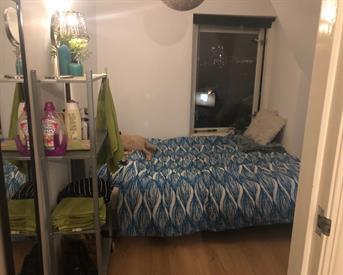 Kamer in Rotterdam, Groene Hilledijk op Kamernet.nl: Kamer in een gezellig huis beschikbaar!