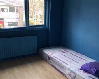 Kamer in Rotterdam, Trilgras op Kamernet.nl: Nice room in nice neighbourhood