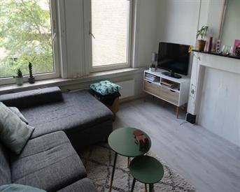 Kamer in Amsterdam, Spaarndammerstraat op Kamernet.nl: Tijdelijk appartement in Westerpark