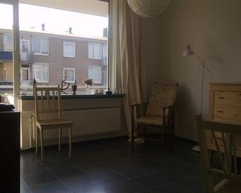 Kamer in Delft, Camerlingstraat op Kamernet.nl: rustig en sfeervol appartement (flat-sharing)