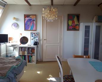 Kamer in Leiden, Herengracht op Kamernet.nl: Huisgenoot gezocht voor gedeeld appartement