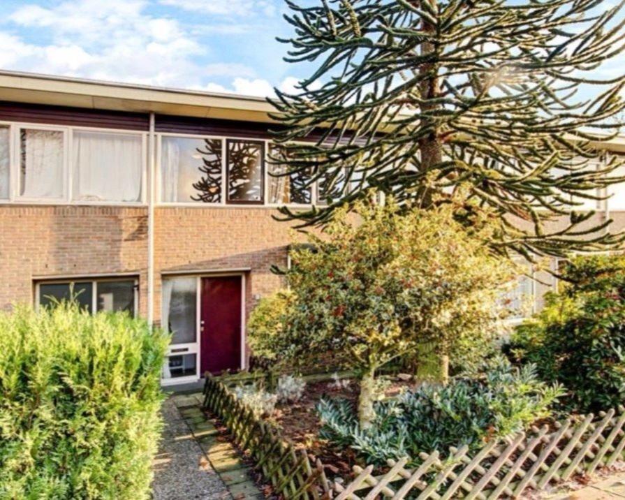 Kamer te huur in de Menkemaborgstraat in Nijmegen