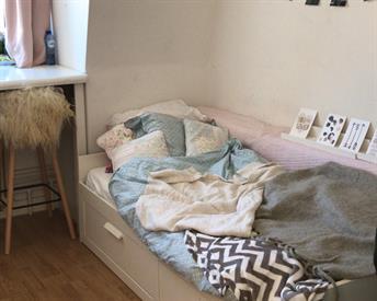 Kamer in Groningen, Stoeldraaierstraat op Kamernet.nl: ⭐️ Huize schatjes zoekt huisgenote ⭐️