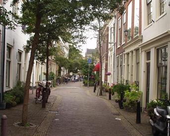 Kamer in Haarlem, Lange Bogaardstraat op Kamernet.nl: 2 etage appartement in Vijhoek in Haarlem centrum