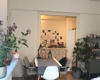Kamer in Leiden, Hogewoerd op Kamernet.nl: Huize Bubbels zoekt vrouwelijke huisgenoot