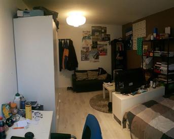 Kamer in Delft, Van Hasseltplein op Kamernet.nl: Kamer nodig? De Dêdde Pinguïn zkt huisgenoot!