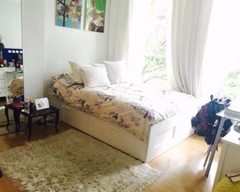 Kamer in Amsterdam, Plantage Muidergracht op Kamernet.nl:  2 Bedroom Duplex at Artis - Planatge Muidergracht
