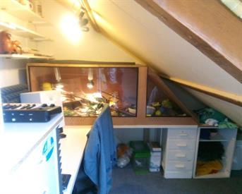 Kamer in Enschede, Potsweg op Kamernet.nl: Huize Ohja?! zoekt jou!