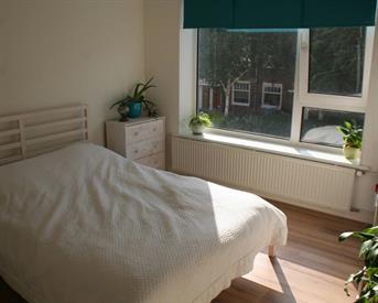 Kamer in Amsterdam, Johannes van der Waalsstraat op Kamernet.nl: Mooie kamer in ruim appartement
