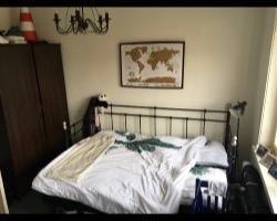 Kamer in Groningen, Korreweg op Kamernet.nl: Huize Muize is op zoek naar een nieuwe huisgenoot