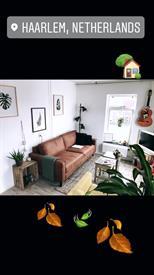Kamer in Haarlem, Palmstraat op Kamernet.nl: 1 maand leuk huisje haarlem!!