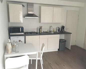 Kamer in Deventer, Venenstraat op Kamernet.nl: Studio met prive keuken en badkamer 625 incl