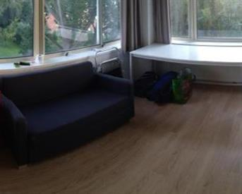 Kamer in Leiden, Klikspaanweg op Kamernet.nl: Huize Defenestratie zoekt een huisgenoot