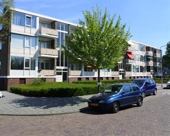 Kamer in Arnhem, Singravenlaan op Kamernet.nl: Frisse kamer in rustig huis bij Hogescholen Arnhem