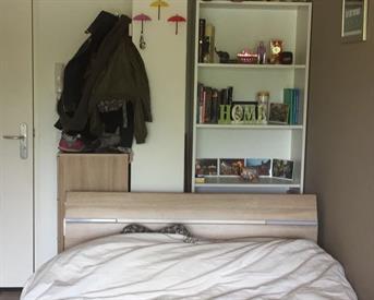 Kamer in Groningen, Dr. C. Hofstede de Grootkade op Kamernet.nl: Studio te huur (tijdelijk)