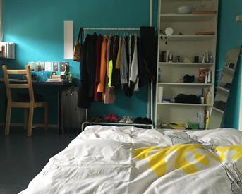 Kamer in Leiden, Opaalstraat op Kamernet.nl: nice and spacious room