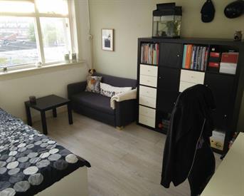 Kamer in Groningen, J.C. Kapteynlaan op Kamernet.nl: Villa Achterwerk zoekt onderhuurder (V)