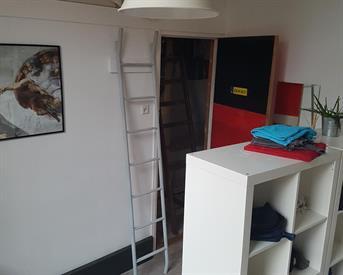 Kamer in Delft, Phoenixstraat op Kamernet.nl: Delftse huisgenoot/huisgenote gezocht!