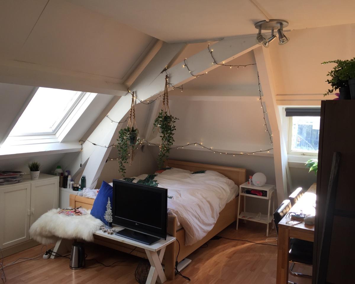 Kamer te huur in rotterdam voor 428 kamernet for Kamer gezocht rotterdam