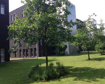 Kamer in Nijmegen, Wachterslaan op Kamernet.nl: Een appartement, tijdelijk
