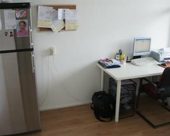 Kamer in Delft, Prof. Telderslaan op Kamernet.nl: Leuke appartement kamer dicht bij TU