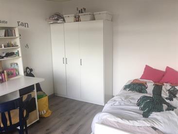 Kamer in Delft, Hendrik Tollensstraat op Kamernet.nl: Huize Gezel zoekt onderhuurder!!