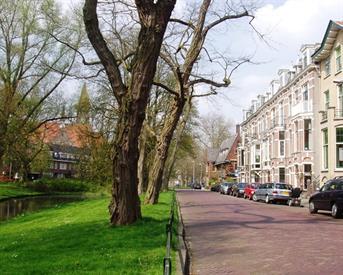Kamer in Utrecht, Koningslaan op Kamernet.nl: Mooie kamer bij Wilhelminapark