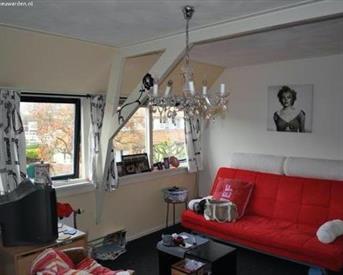 Kamer in Leeuwarden, Meidoornstraat op Kamernet.nl: Meidoornstraat