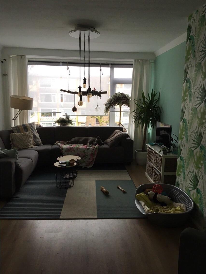 Kamer te huur in de Asingastraat in Groningen