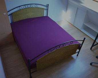 Kamer in Den Haag, Rederijkerstraat op Kamernet.nl: Furnished short stay room with terrace