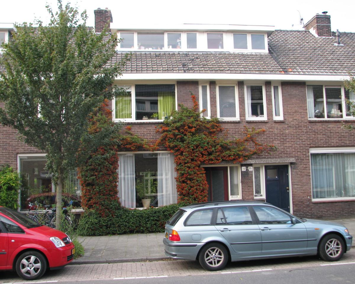 Pieter Nieuwlandstraat