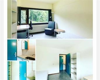 Kamer in Nijmegen, Professor Bromstraat op Kamernet.nl: Tijdelijke Kamer