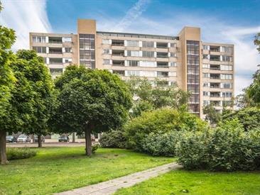 Kamer in Leiden, Bachstraat op Kamernet.nl: Zeerruime 3 kamer appartement