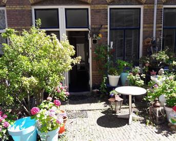 Kamer in Den Haag, IJmuidenstraat op Kamernet.nl: Scheveningen parterre te huur