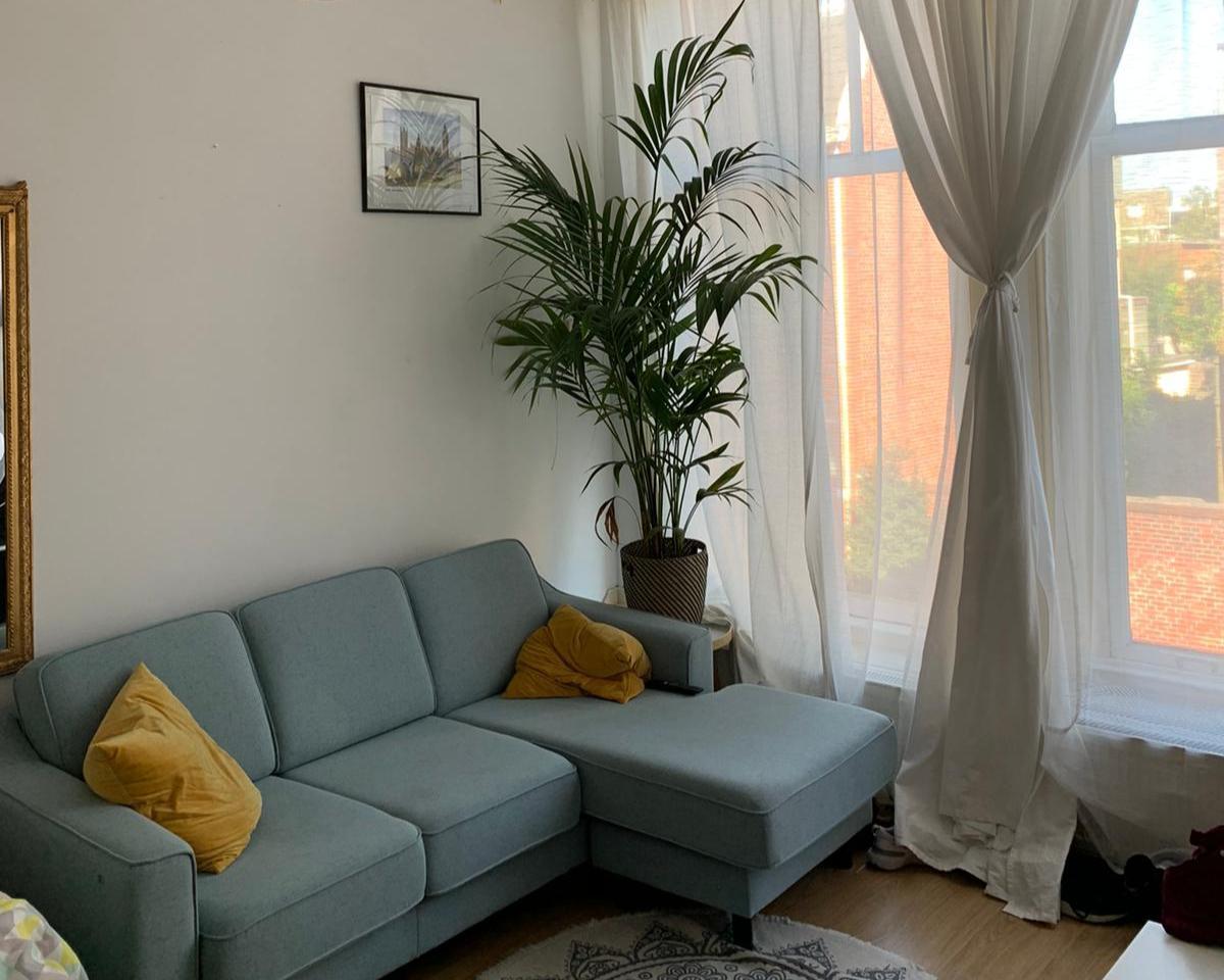 Kamer te huur in de Alexanderstraat in Groningen