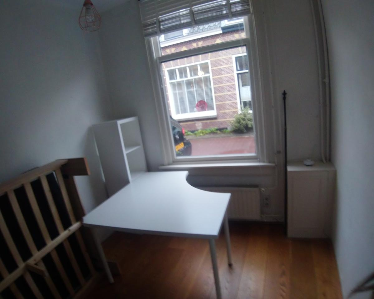 Kamer te huur in de Eliza Dorusstraat in Delft
